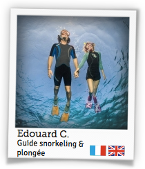 Edouard C.,guide snorkeling & plongée