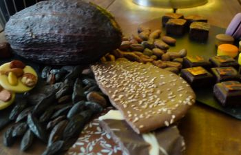 Atelier gourmand : accords Vins et Chocolats