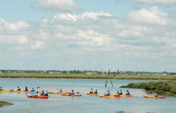 Sortie kayak à la découverte du marais de Seudre, près de Royan