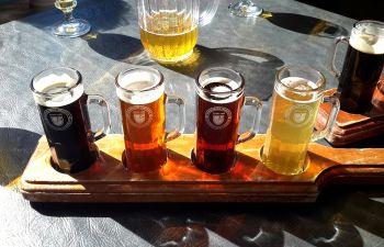 Initiation à la dégustation de bières à Lille
