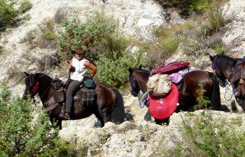 Randonnée à cheval sur les hauteurs de Nice