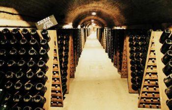 Excursion d'une journée en Champagne : visite et dégustation