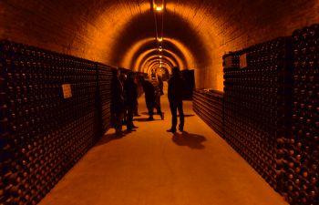 Excursion de luxe en Champagne : visite et dégustation
