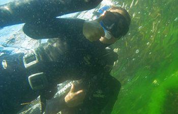 Rando palmée sur l'étang de Thau et le littoral Sétois