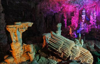 Visite guidée de la Grotte de la Salamandre