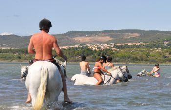 Randonnée baignade avec les chevaux près de Narbonne