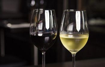 Dégustation et découverte des vins Basques