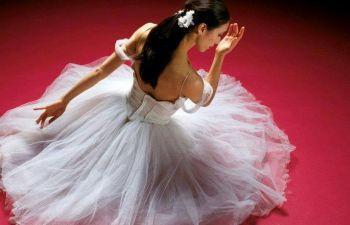 Cours de danse de Salon + bal des mariés + EVJF