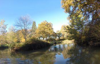 Initiation et balade en stand up Paddle en rivière !