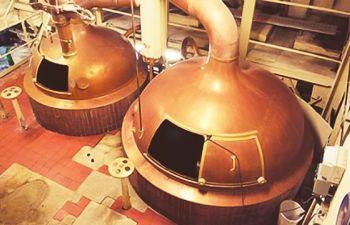 Visite d'une brasserie artisanale dans la région de Lille