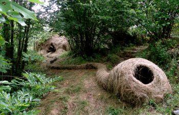 Atelier de Land'Art dans les Pyrénées Orientales
