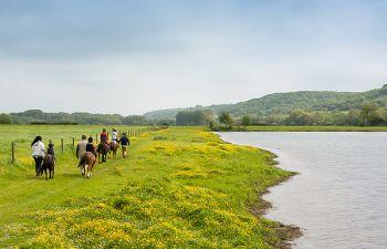 Baptême de poney en famille : activité-découverte pour enfants