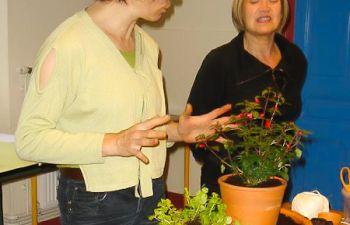 Atelier : apprenez l'art floral avec une fleuriste passionnée