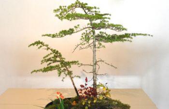 Initiation à l'art floral japonais sur l'île de Ré