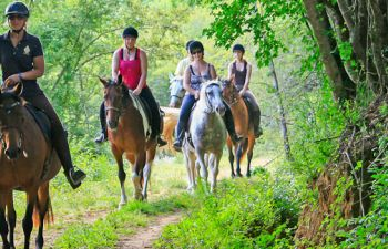 Balade à cheval dans la campagne girondine