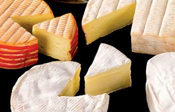 Découverte des fromages AOP normands chez un fabricant