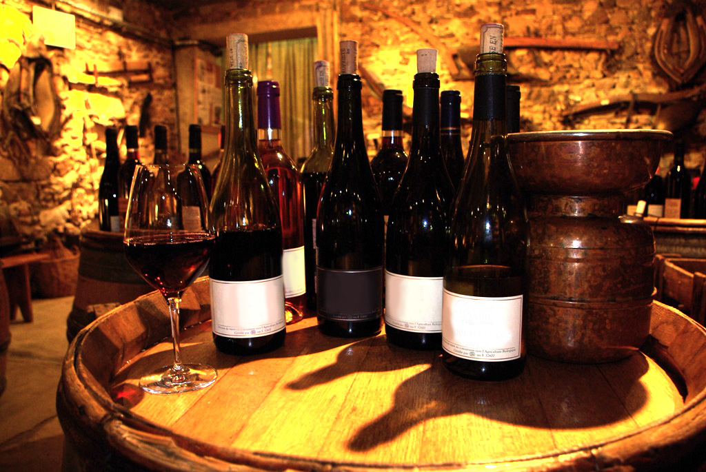 Vignoble beaujolais visite