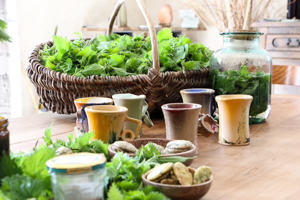 Soyez herboriste d 39 un jour utilisation et cuisine des plantes sauvages activit bais - Cuisine plantes sauvages ...